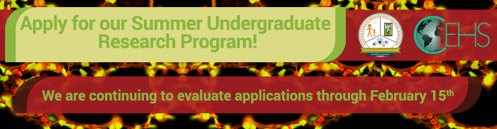 Apply for our Summer Undergraduate Research Program! We are continuing to evaluate applications through February 15th